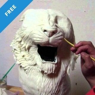 Tiger Cake Timelapse