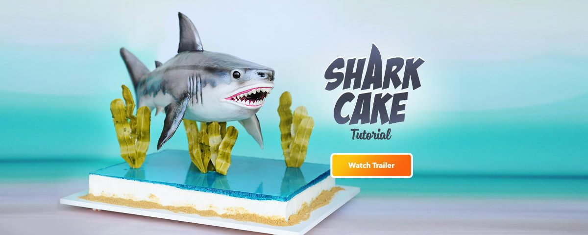 shark-cake-desktop-out