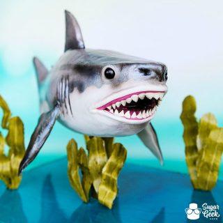 shark cake tutorial