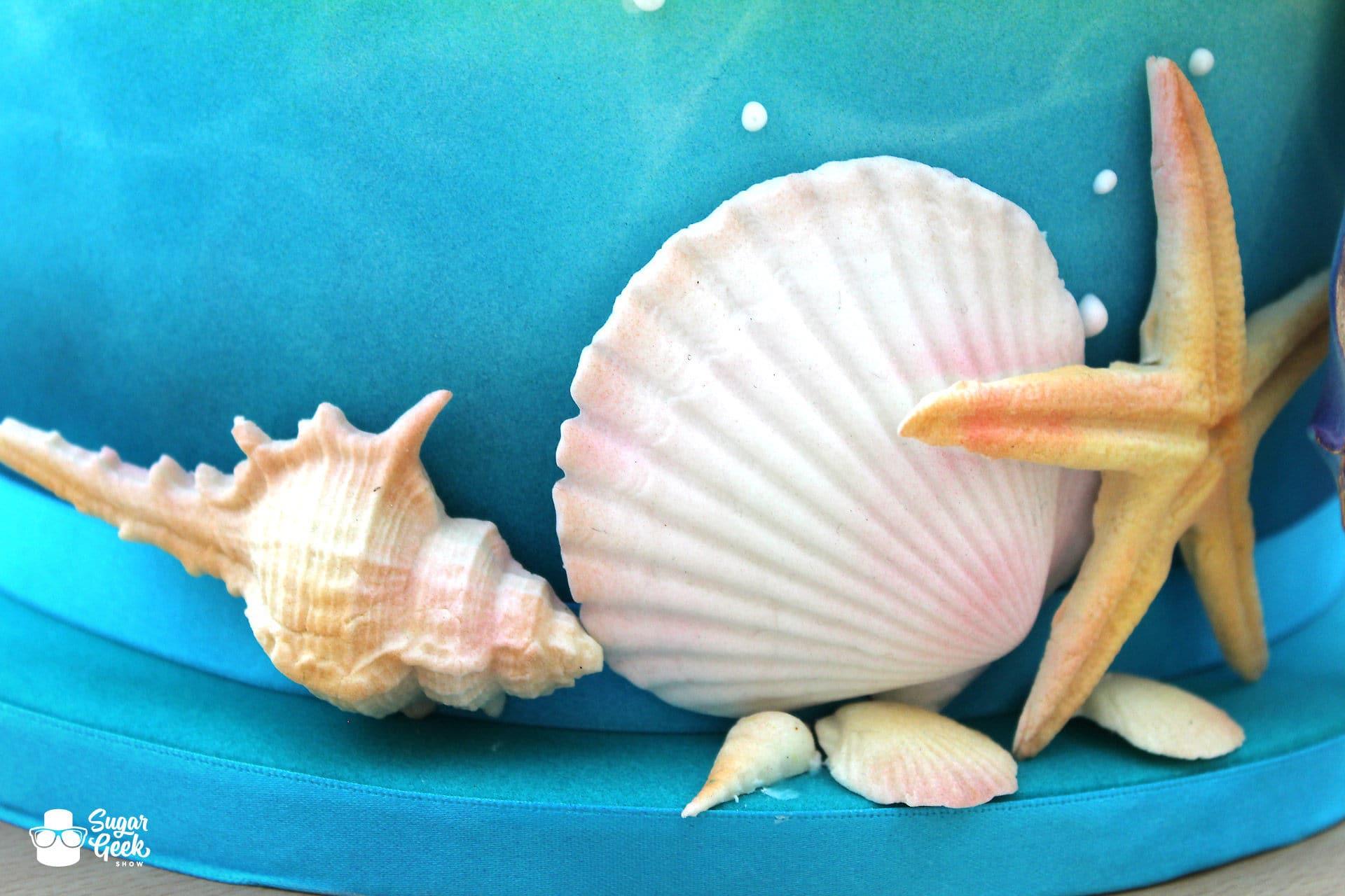 Edible Shells Airbrushed
