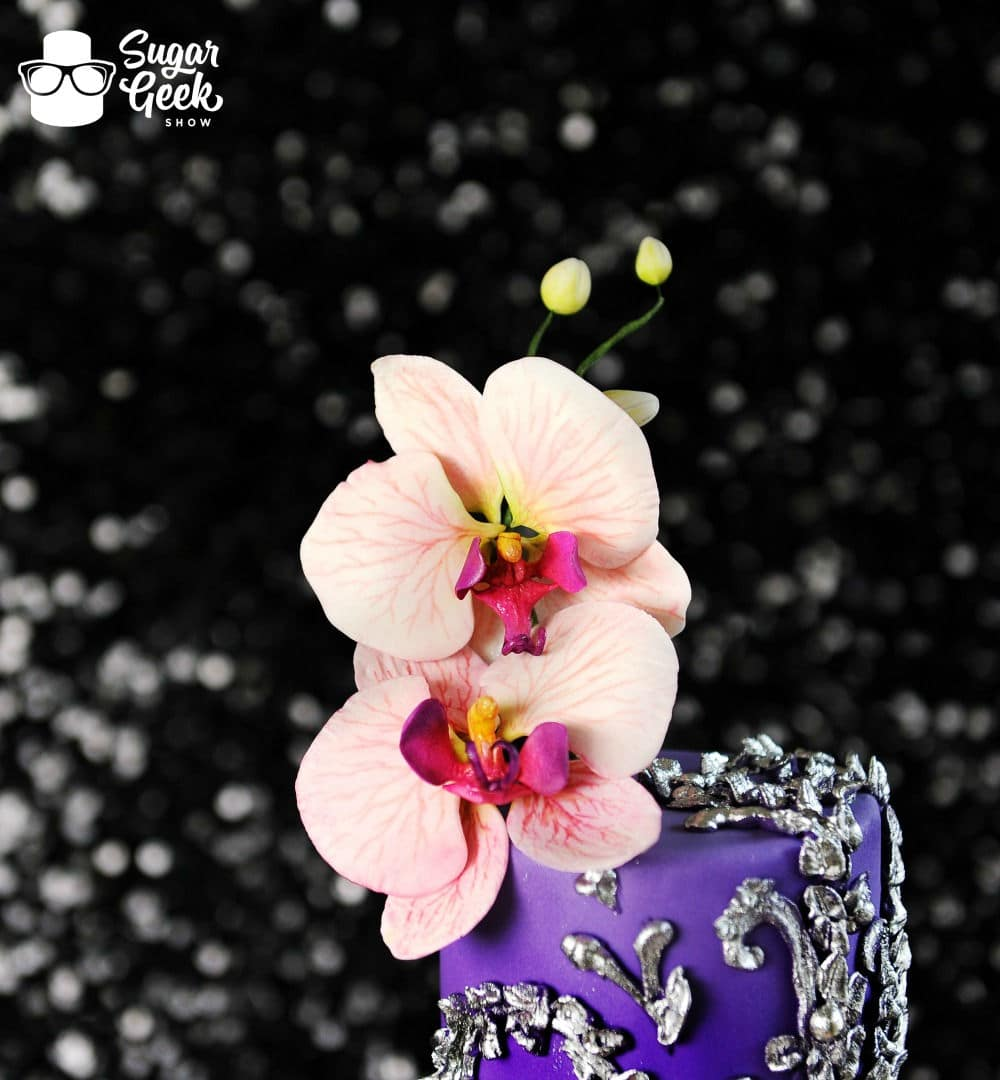 how to make moth orchids from cake festival