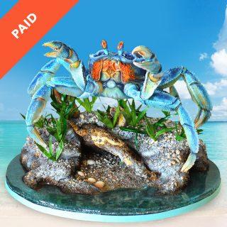 Crab Cake Tutorial