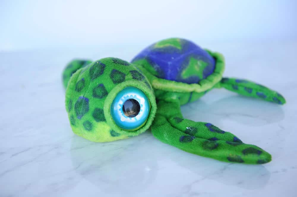 toy turtle