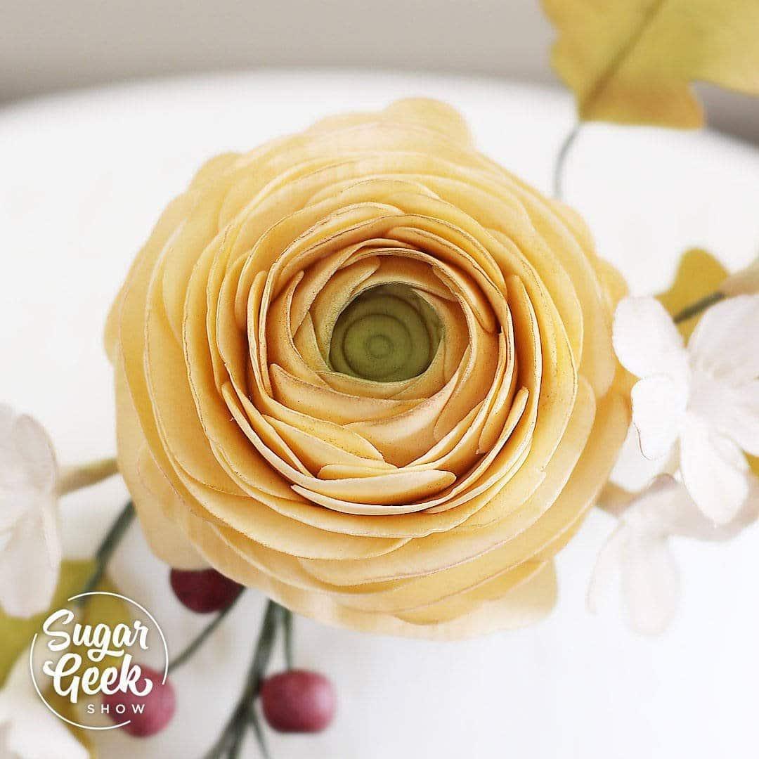 Ranunculus step-by-step sugar flower tutorial.