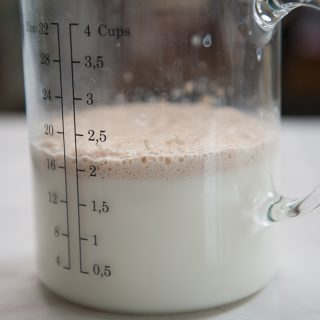 closeup of yeast foaming in milk