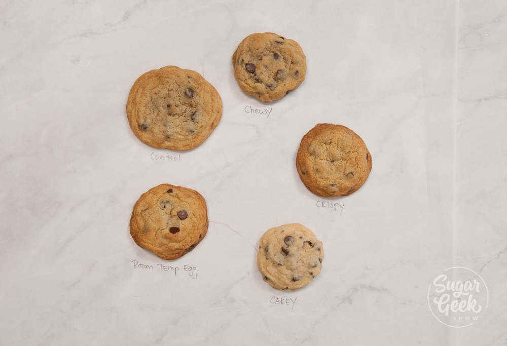 chocolate chip cookie tests on a white background shot from above