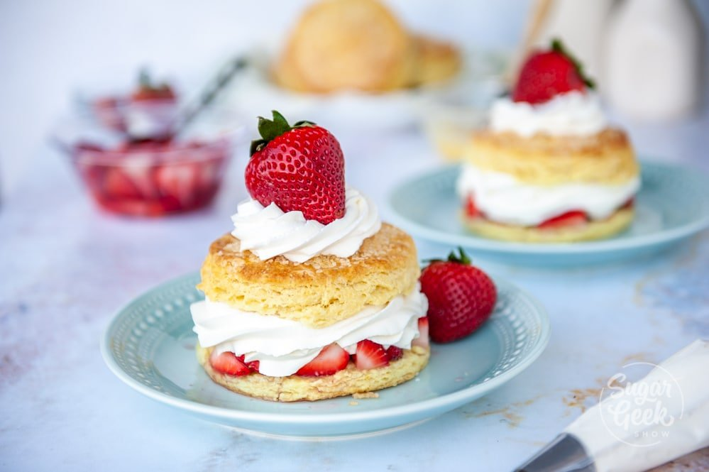 two strawberry shortcakes on blue plates on a white background