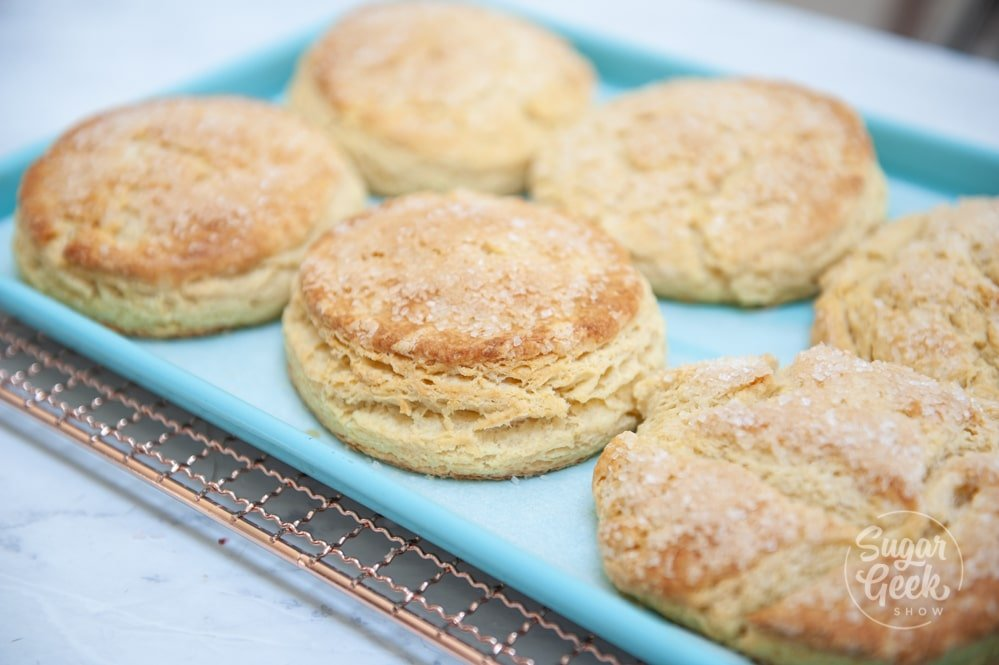 freshly baked biscuits on blue sheet pan