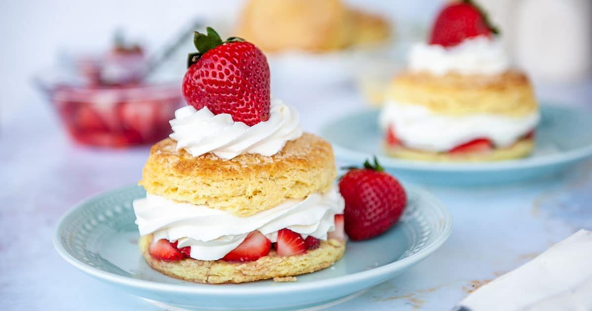 strawberry shortcake on blue plate with fresh strawberries