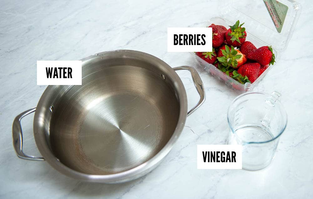 ingredients for berry wash