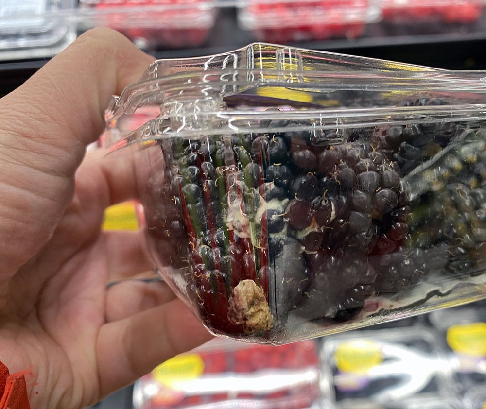 molding blackberries in plastic container