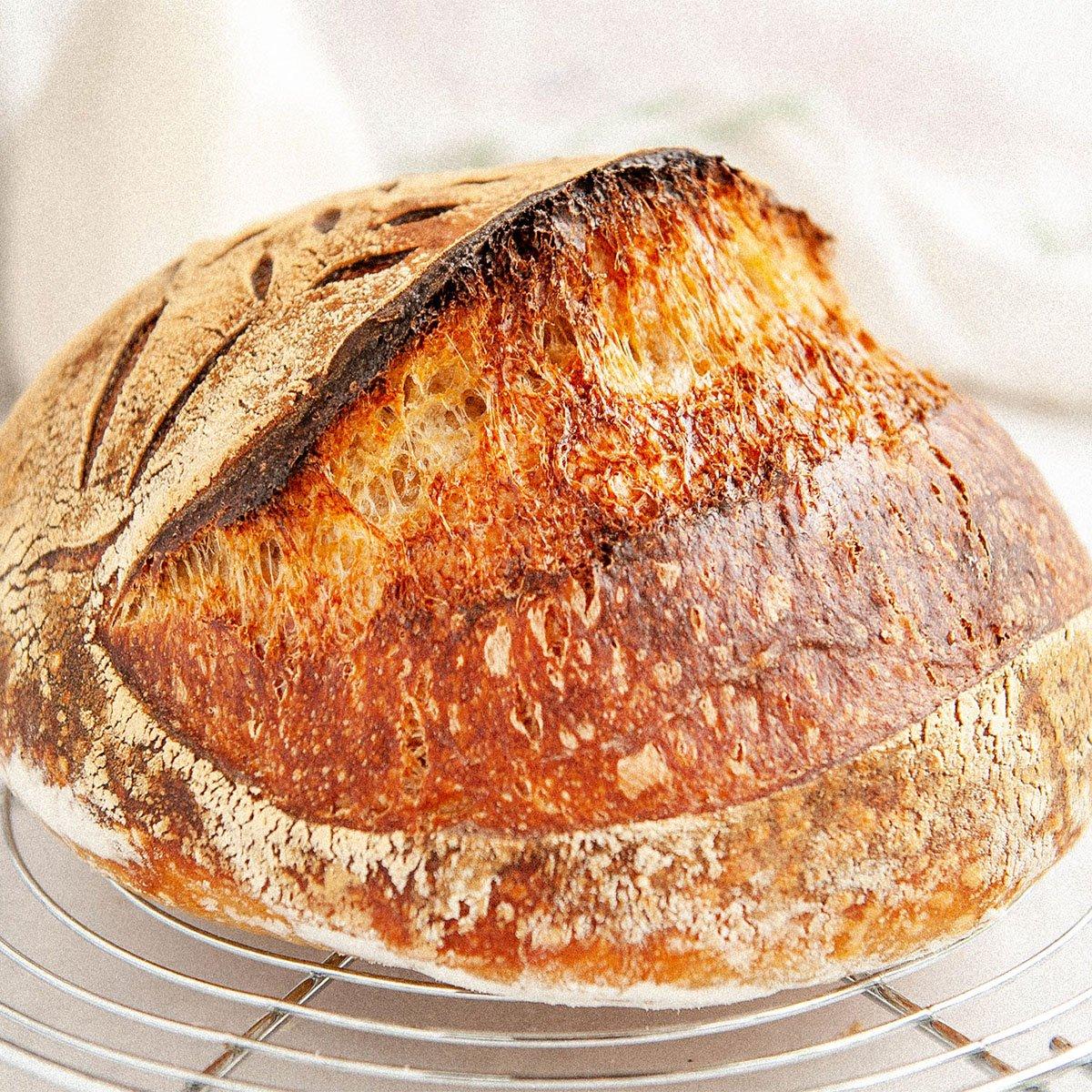 closeup of homemade sourdough bread