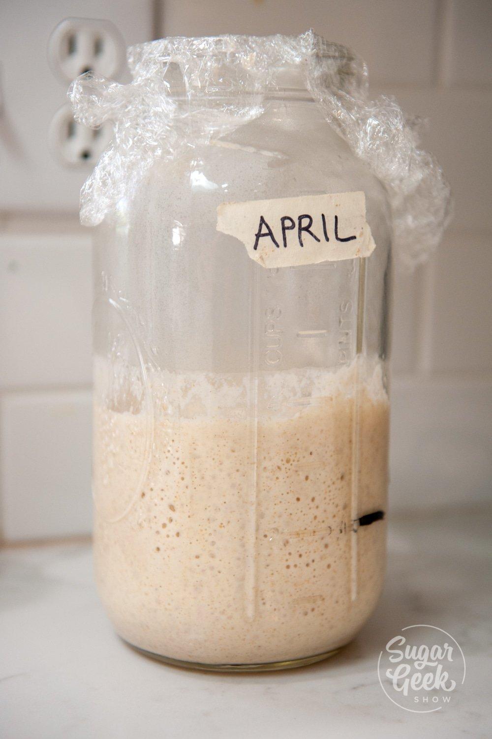 sourdough starter in clear jar labeled april