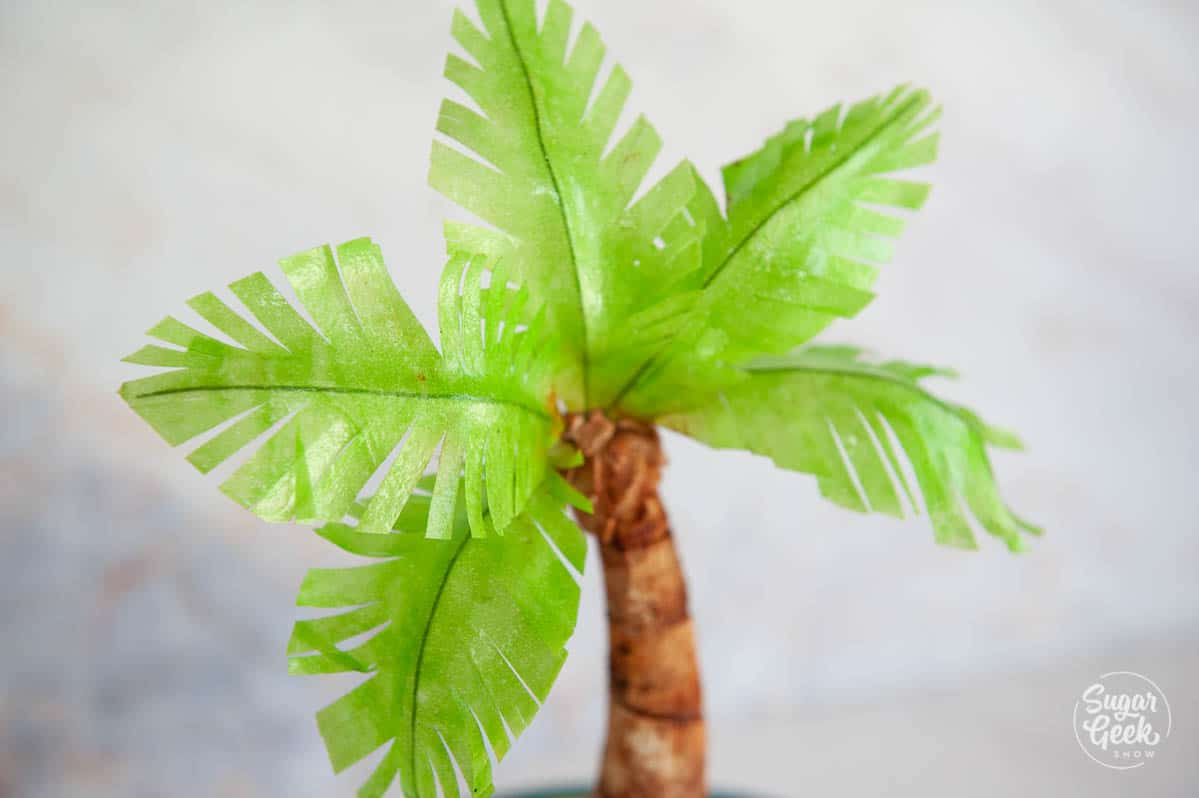 close up of modeling chocolate palm tree with wafer paper leaves