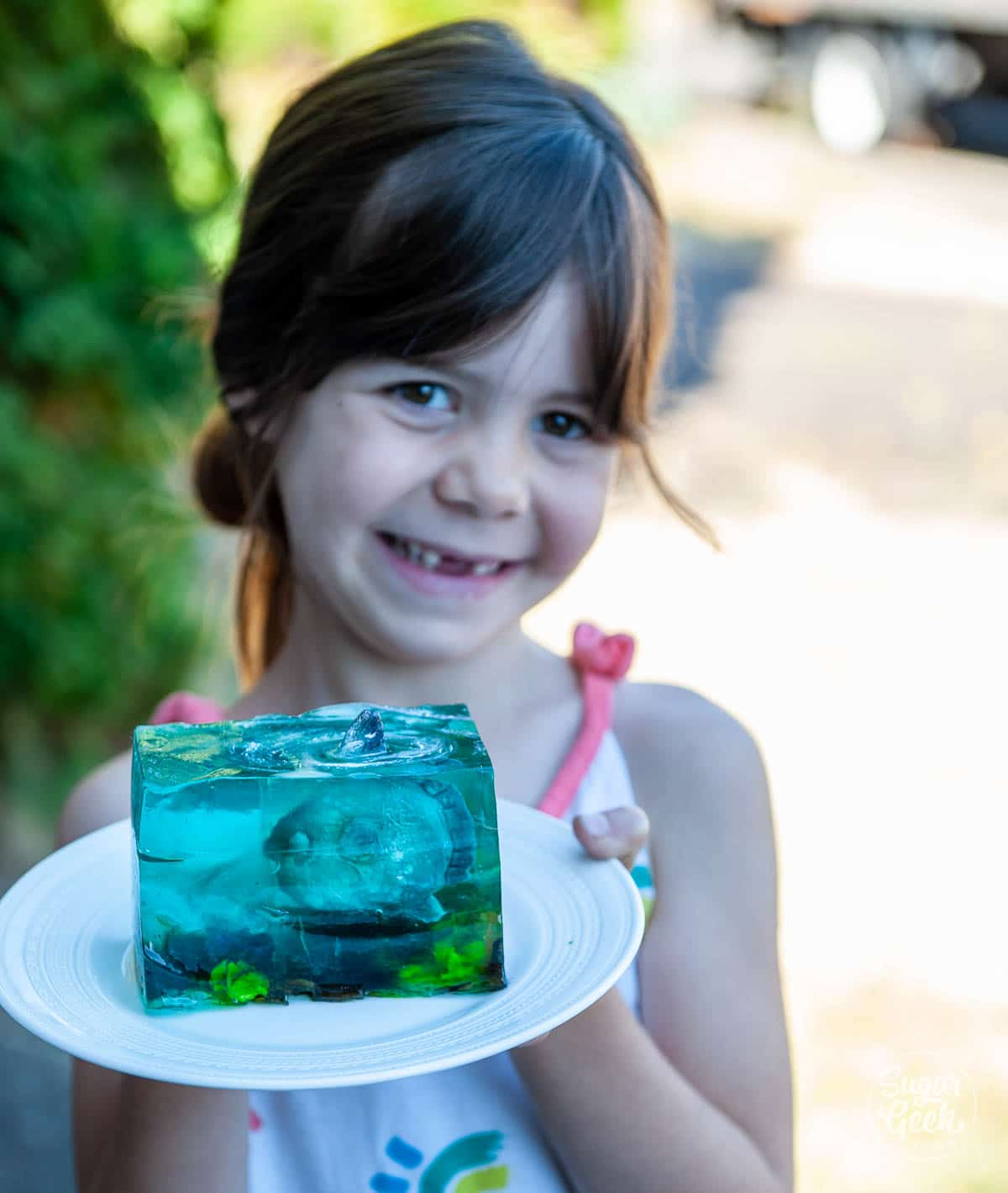girl holding a slice of jelly cake with modeling chocolate sunfish inside