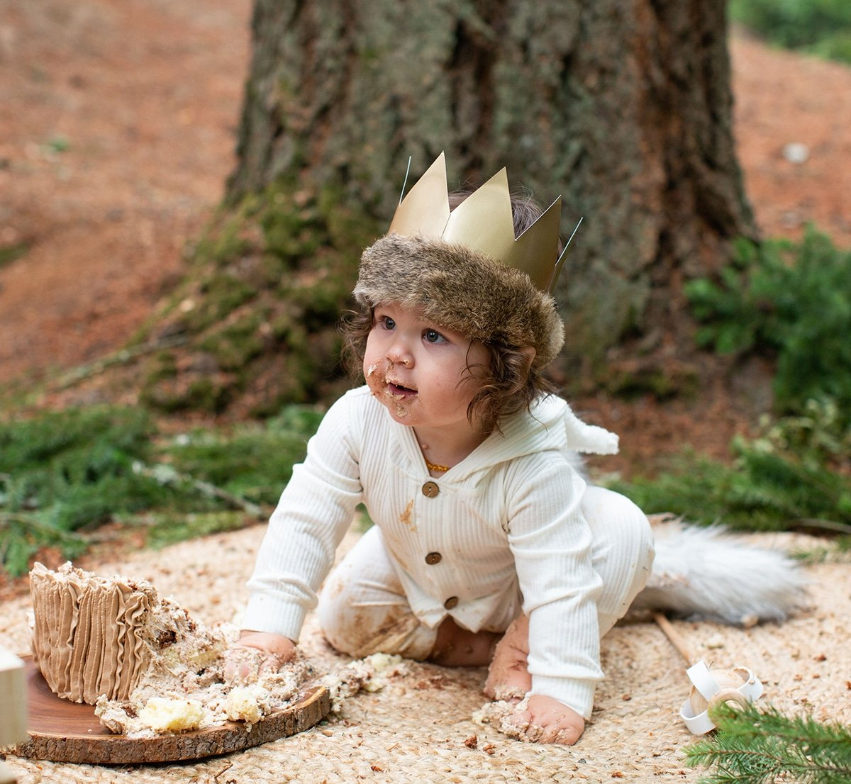 where the wild things are smash cake session