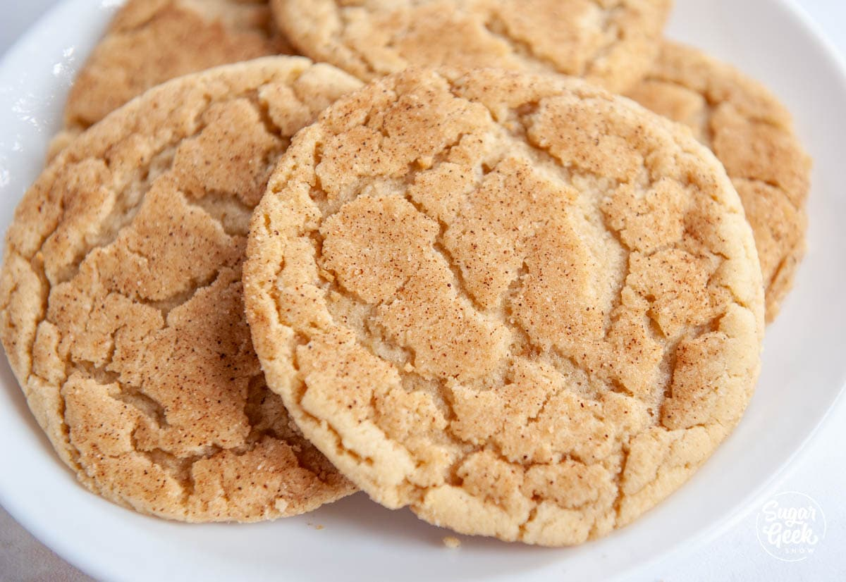 snickerdoodle cookie closeup