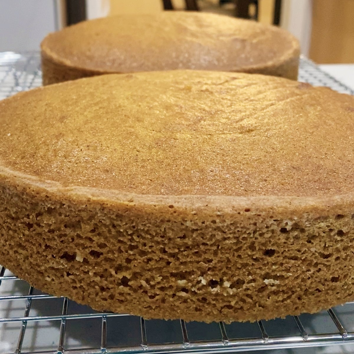 closeup of baked pumpkin cake