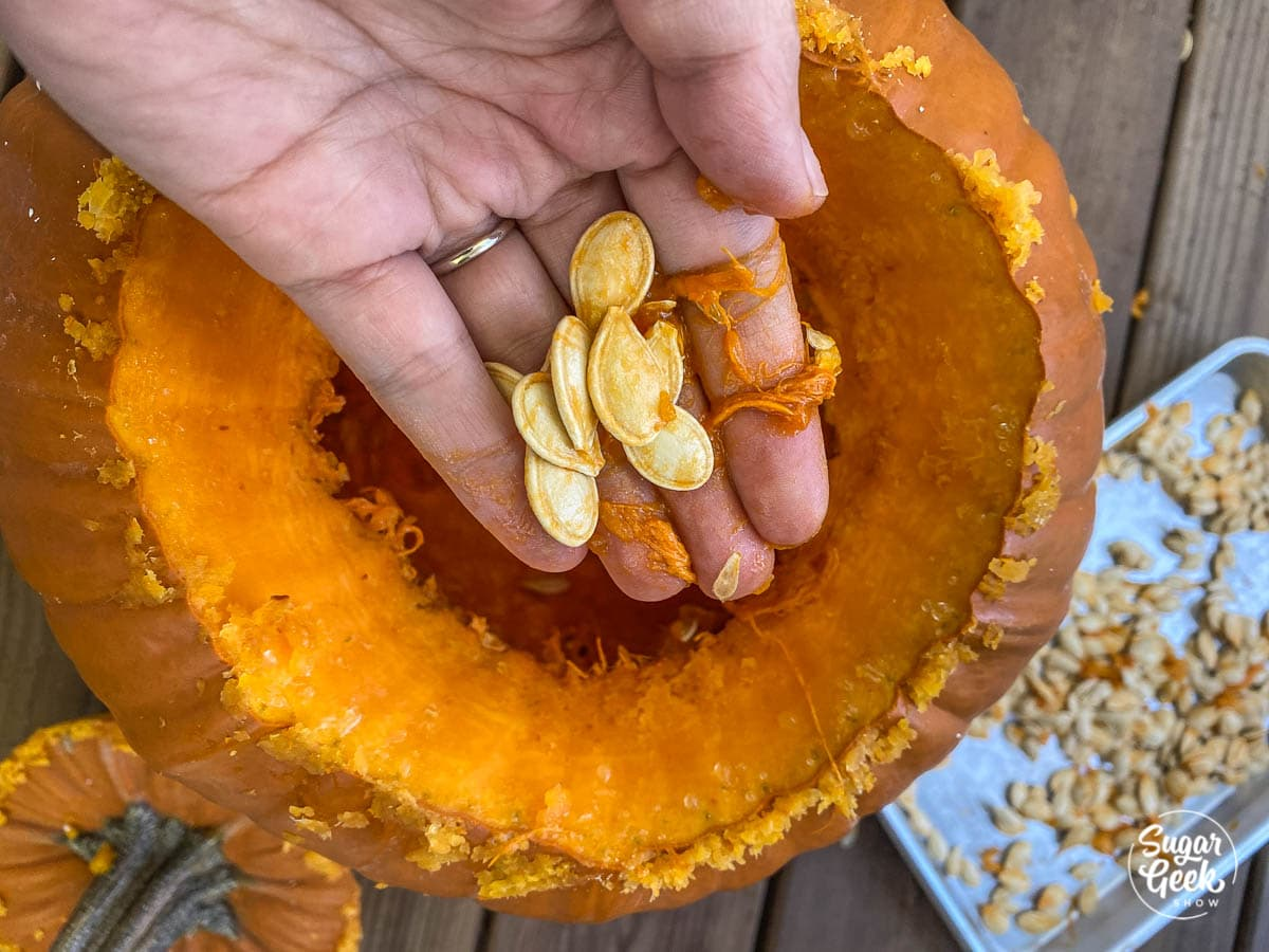 pumpkin seeds in a hand over the top of a carved pumpkin