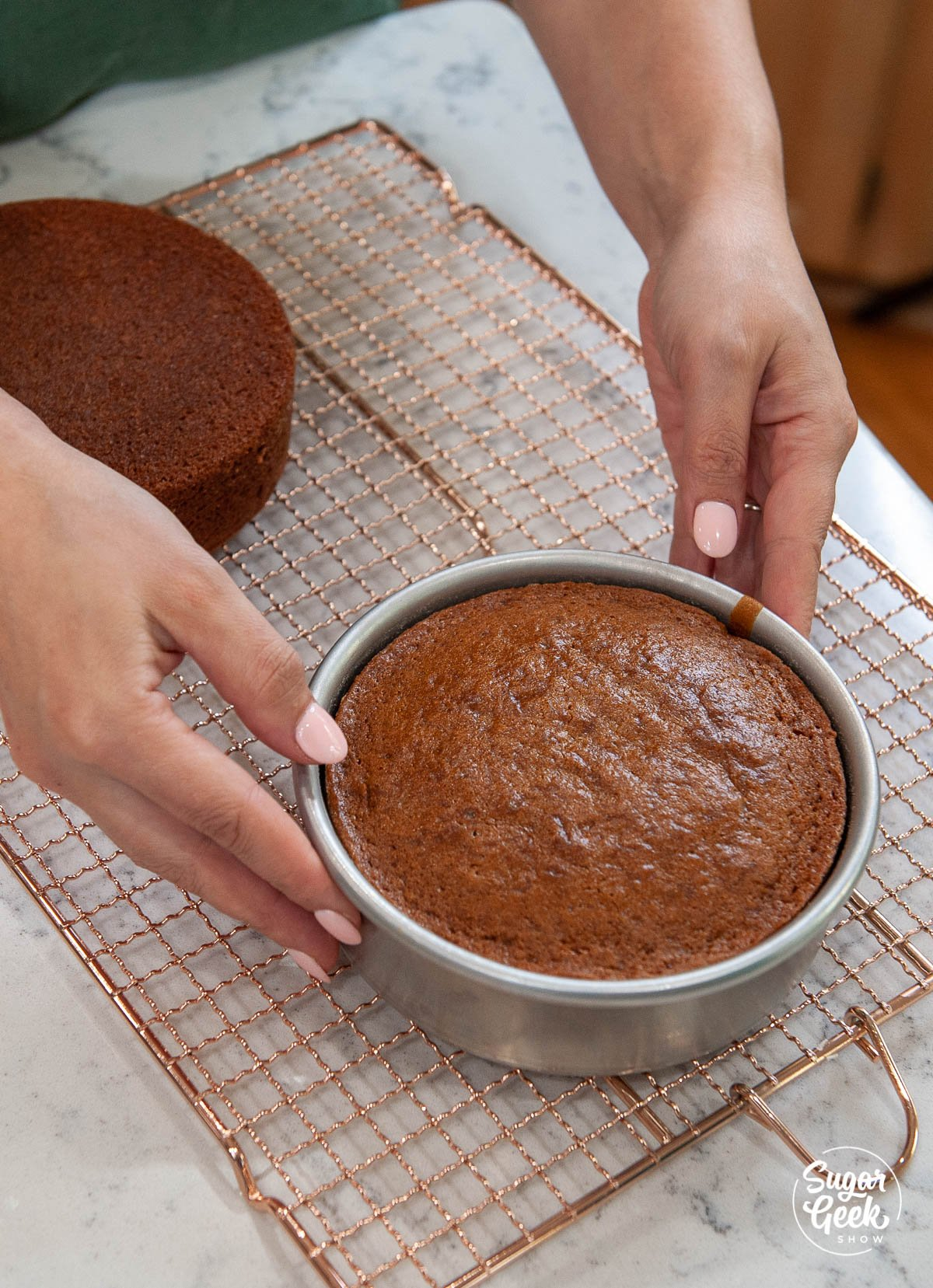 gingerbread cake on a cooling rack