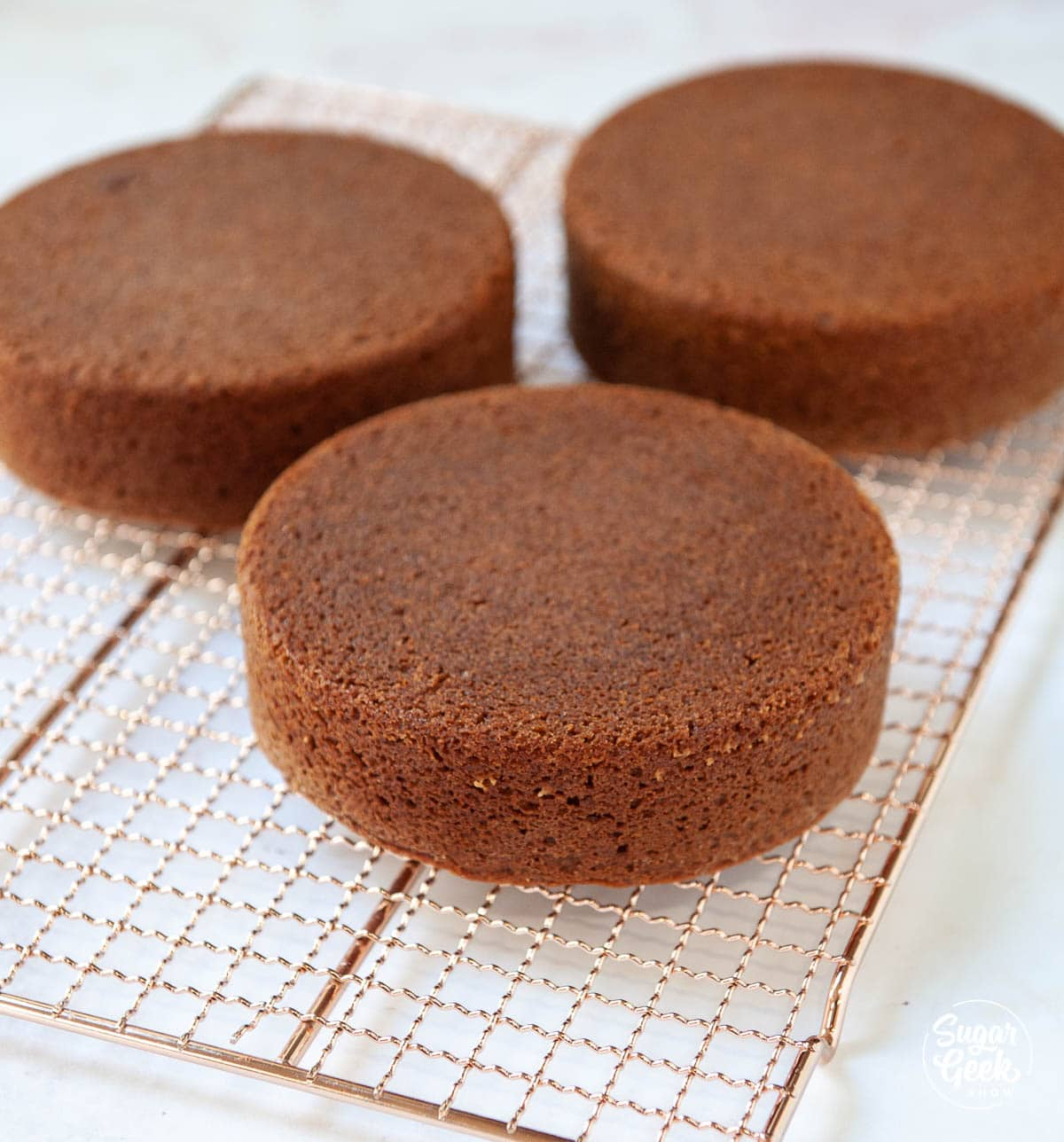 gingerbread cakes on a cooling rack