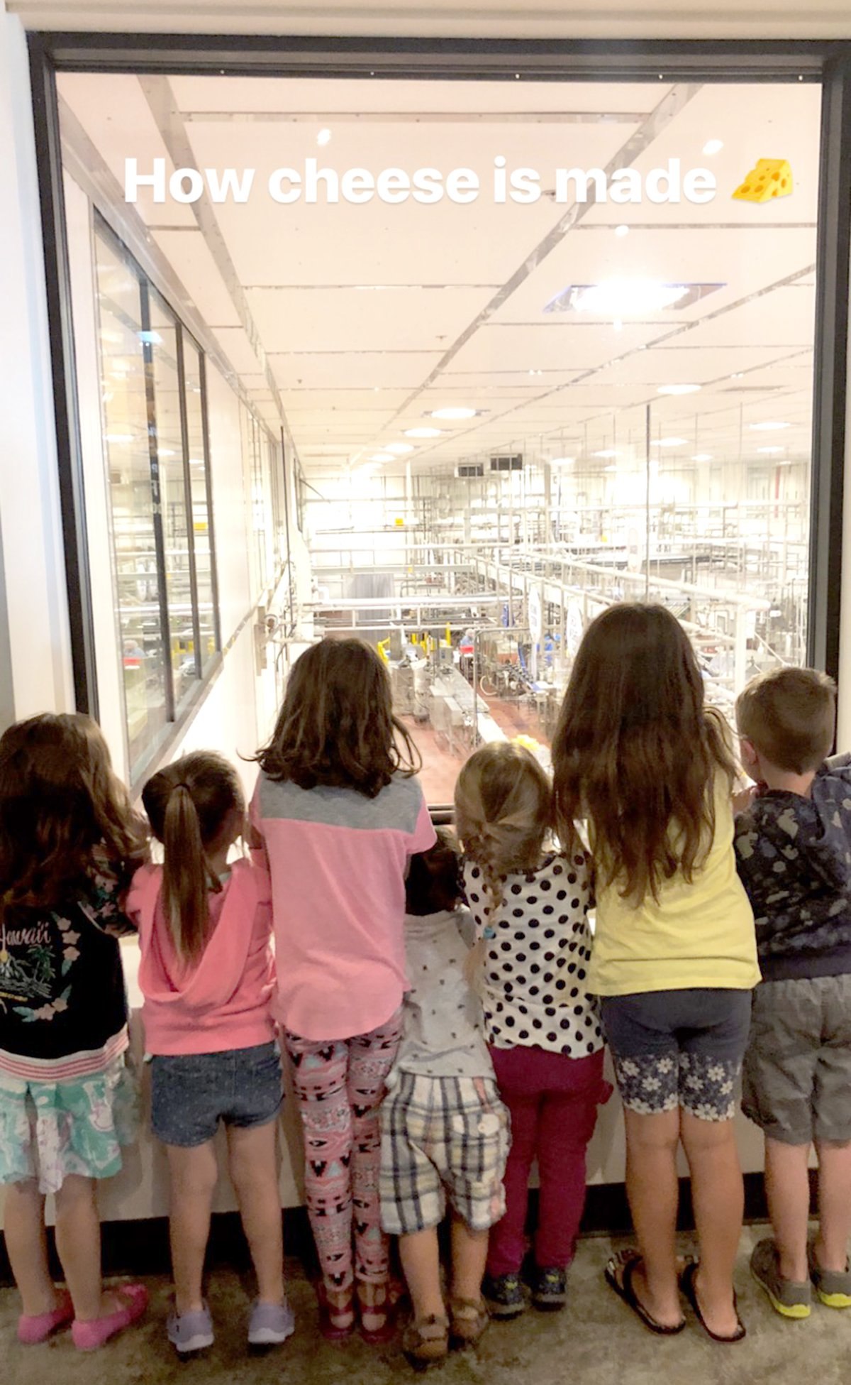 kids standing in front of a window at Tillamook creamery
