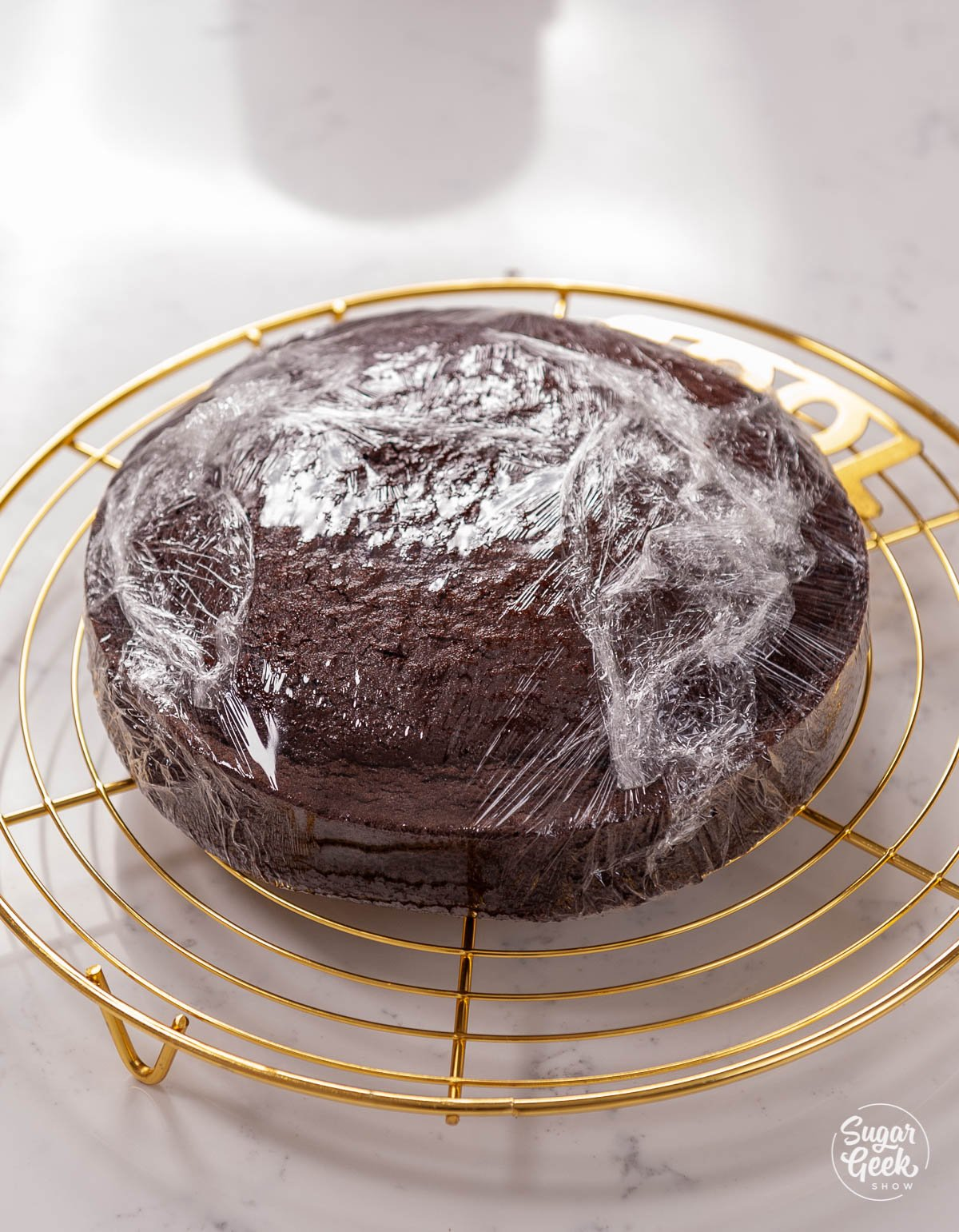 chocolate cake wrapped in plastic wrap