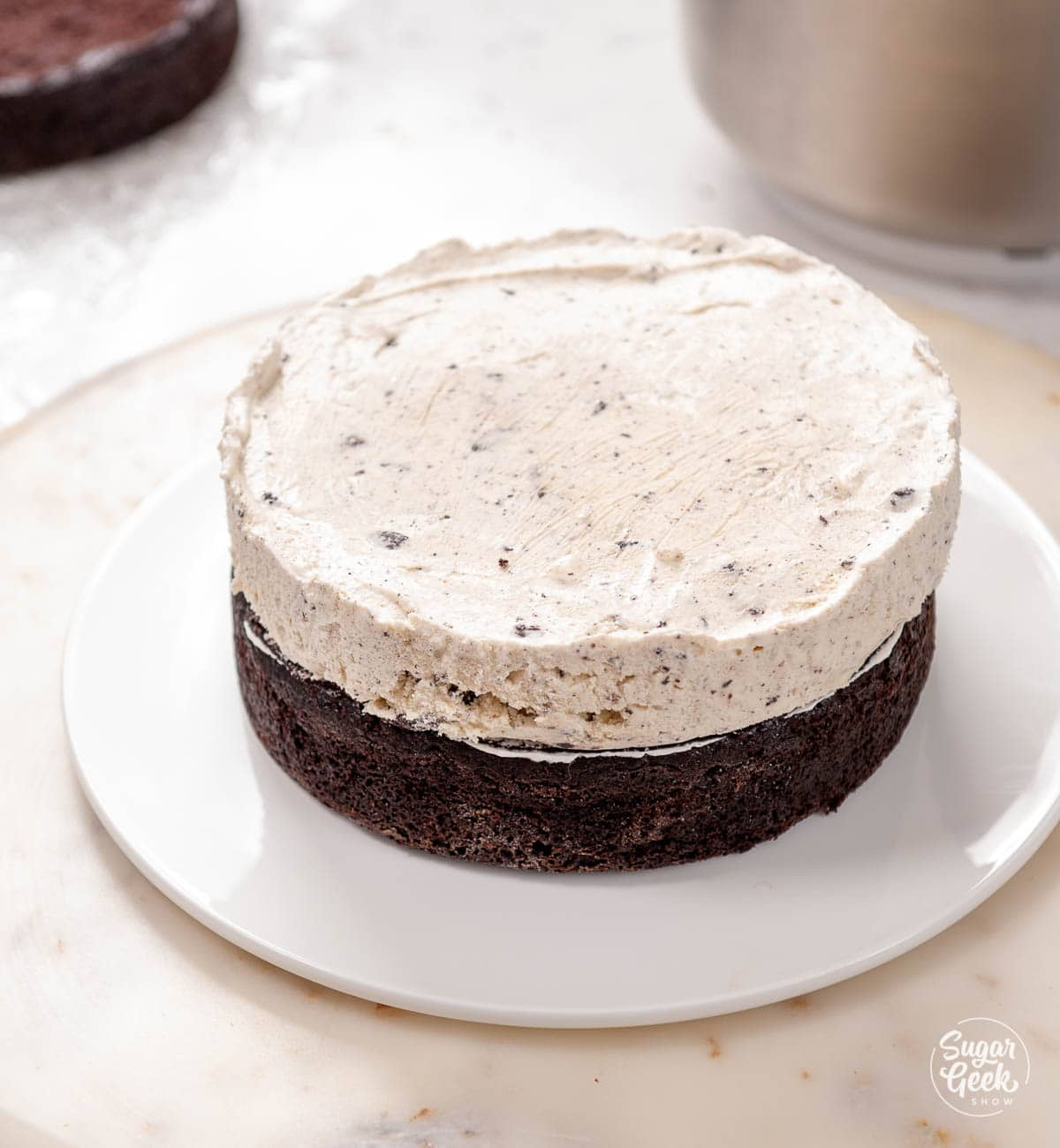 chocolate cake and ice cream layer on a white plate