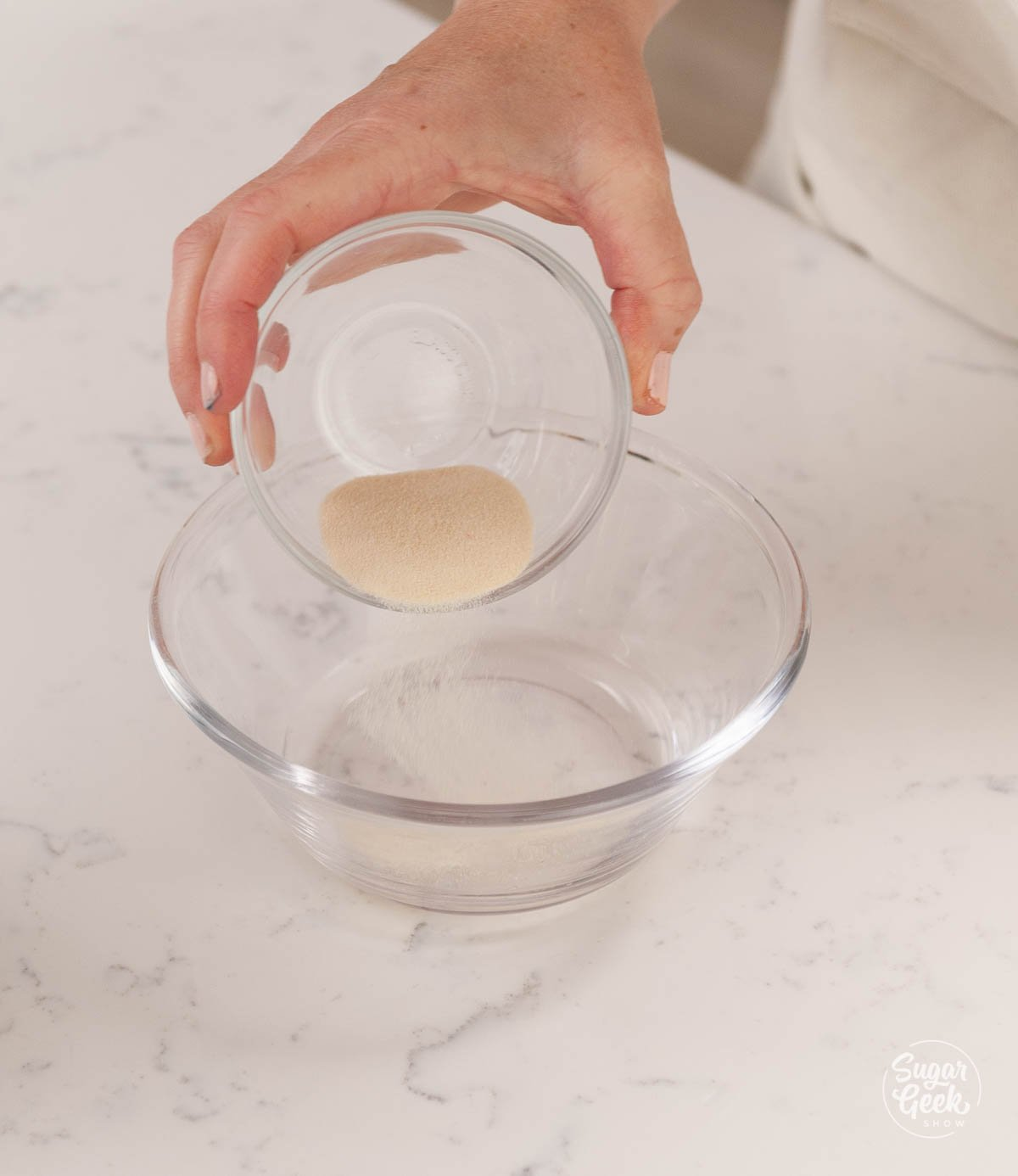 sprinkling gelatin into cold water