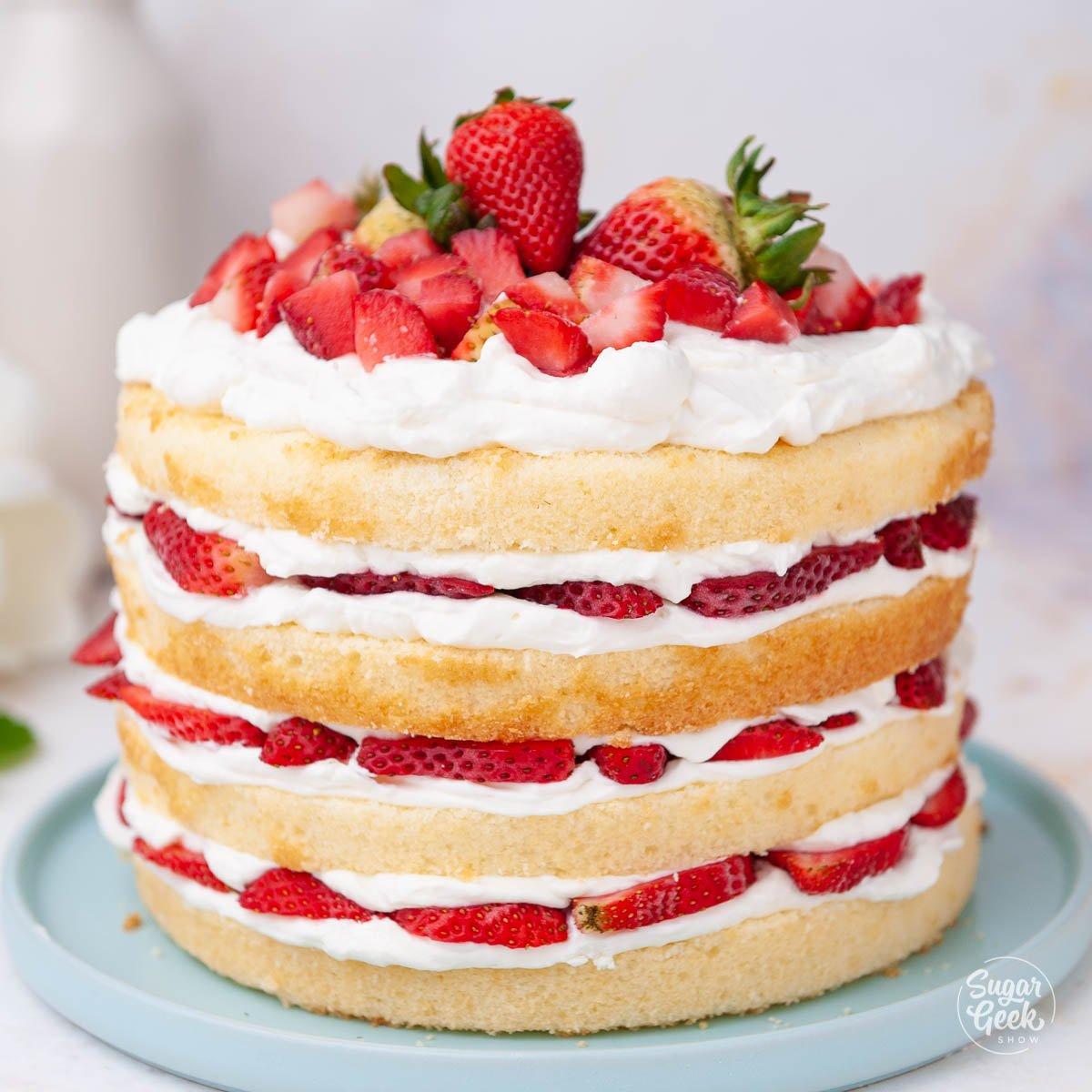 closeup of strawberry shortcake on a blue plate