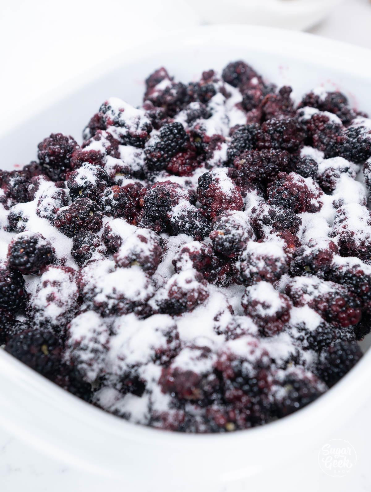 sugar sprinkled over blackberries in a white baking dish