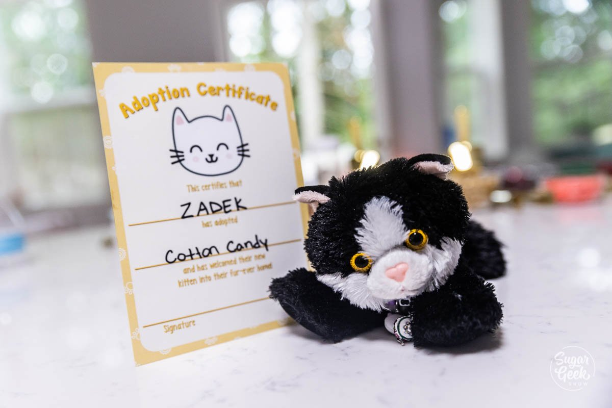 cat party adoption certificate printable