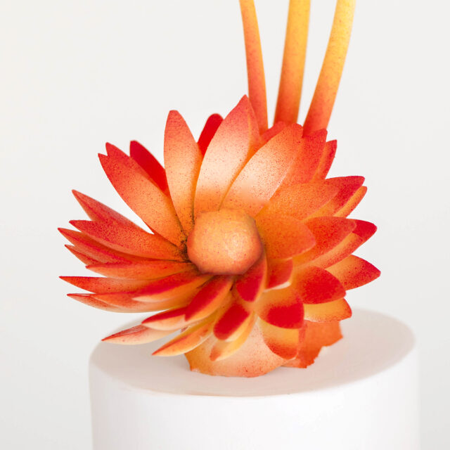 close up of chocolate flower